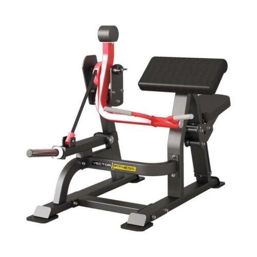Vector Fitness Xtreme Bicepszgép